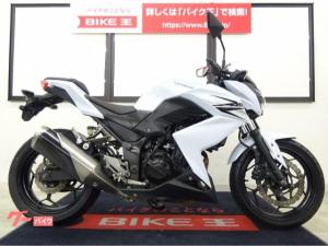 カワサキ/Z250 2013年モデル KIJIMAヘルメットホルダー