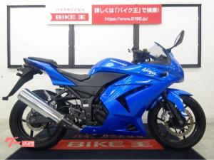 カワサキ/Ninja 250R 2008年モデル DAYTONAマスターキャップ