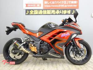 カワサキ/Ninja 250 2016年モデル アクラポビッチサイレンサー 社外バックステップ搭載