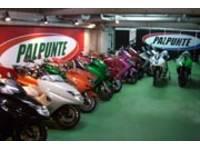 PALPUNTE MOTOR