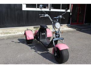 日本その他 日本  三輪トライク・公道走行可・EV・ヘルメット不要