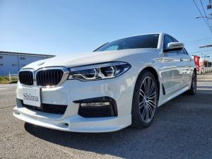 BMW 5シリーズ 523d Mスポーツ 黒革シート・地デジTV・19インチアルミ・3Dデザインスポイラー