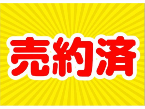 スズキ ワゴンR FX タイミングチェーン・オートマ・AC・車検2年・保証付