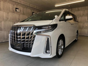 トヨタ アルファード 2.5S アルパインBIGXナビ・フルセグTV セーフティセンス レザー調シートカバー LEDヘッドライト 両側パワースライドドア ETC