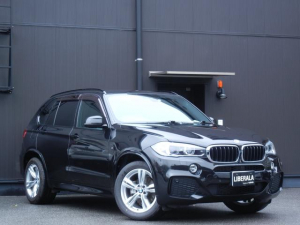 BMW X5 xDrive 35d Mスポーツ インテリジェントセーフティ レザーシート/ヒーター/パワーシート 電動Rドア HDDナビ/CD/DVD/USB/AUX/BT/フルセグTV 全方位カメラ PDC オートライト パドルシフト ETC