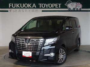 トヨタ アルファード S Cパッケージ 地デジ対応 両自ドア クルコン TV