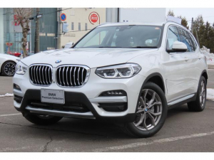 BMW X3 xDrive 20d Xライン ハイラインパッケージ デモカー ハイラインパッケージ モカレザー アンビエントライト ACC リアシートヒーター 19インチAW
