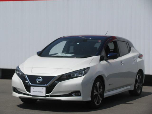 日産の安全装備や先進技術がたくさん付いています100%電気自動車なのでガソリンを全く使いません