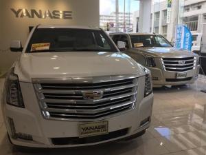 キャデラックエスカレード Platinum 1年保証 新車保証