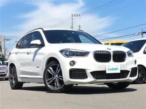 BMW X1 sDrive 18i Mスポーツ 純正ナビ 電動リアゲート ETC LED BT