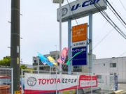 トヨタカローラ愛知(株) 田原マイカーセンター