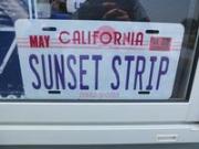 SUNSET STRIP サンセットストリップ