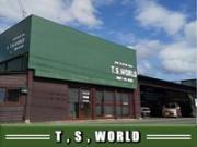 T.S.World