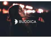 (株)BUDDICA(バディカ) 本店