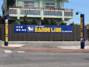DANDE Lion 沖縄